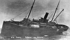 fawn-62212-orkney-1912